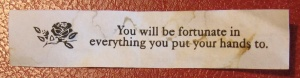 You will be fortunate in everything you put your hands to